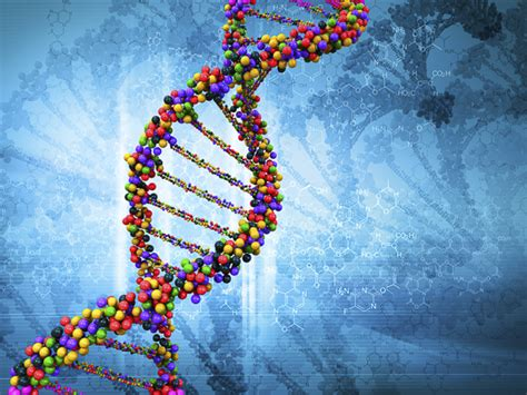 Stanford researchers find genomic signatures of human