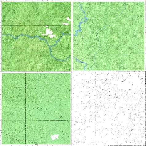 arcgis desktop - Cropping or removing borders (not NoData